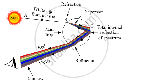 solution for draw a labelled ray diagram to show the formation of a Diagram of Rainbow Foods the given diagram shows the formation of rainbow in the sky
