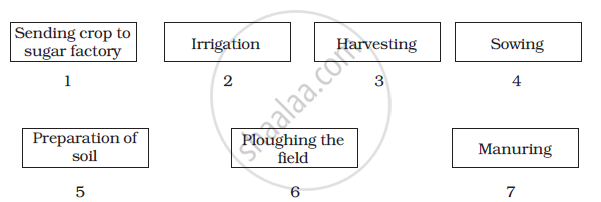 Solution Arrange The Following Boxes In Proper Order To Make A