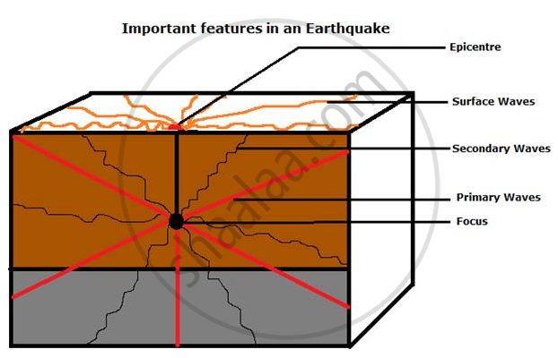 Show The Epicentre Focus And The Primary Secondary And Surface Waves Of An Earthquake With The Help Of A Neat Labelled Diagram Geography And Economics Shaalaa Com