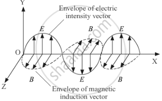 Draw a Schematic Sketch of the Electromagnetic Waves ... A Schematic Diagram Electromagnetic on