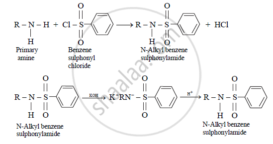 What is the Action of Benzene Sulphonyl Chloride on Primary