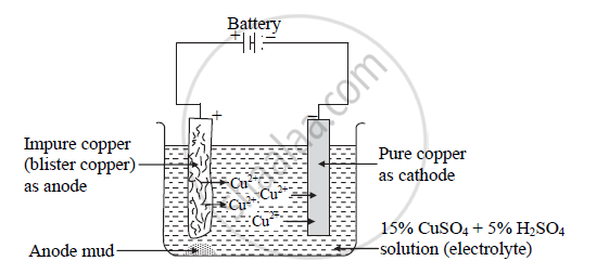 Solution For Draw Neat Labelled Diagram Of Electrolytic Refining Of