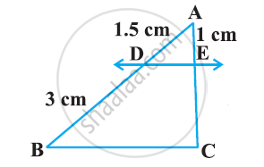 NCERT solutions for Class 10 Mathematics chapter 6